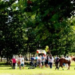 parco-in-festa-coi-cavalli